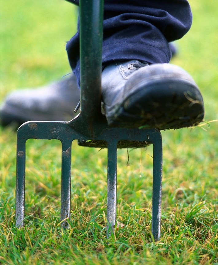Prepare Your Lawn and Garden for Winter