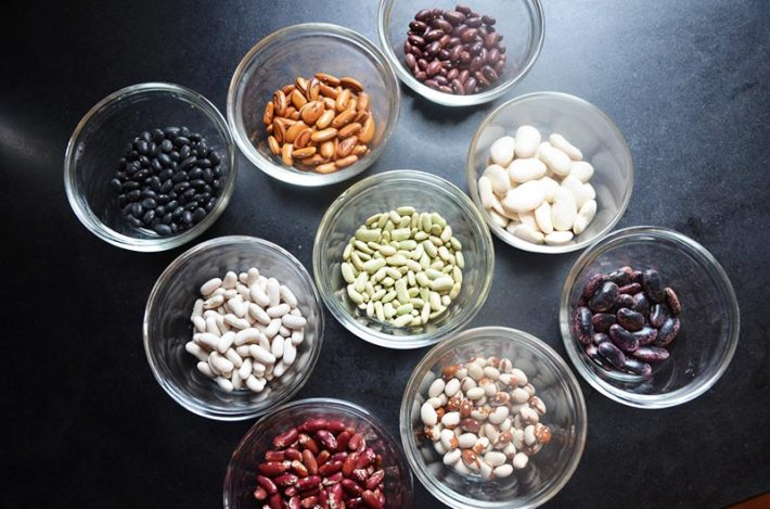 How to Save Your Own Seeds