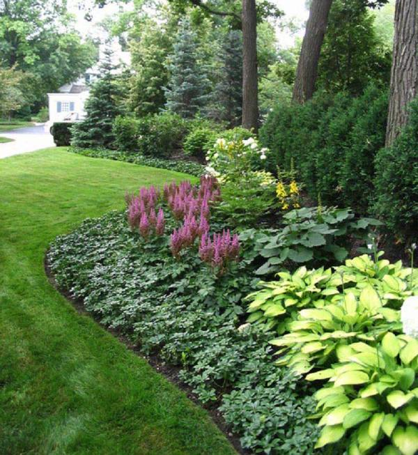 Low Maintenance Landscaping Ideas with Plants