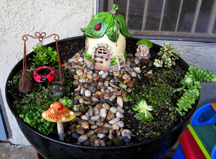 Fairy Garden In Container   Amazing Ideas