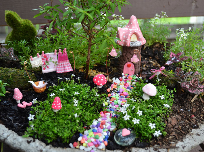 Quiet Corner Container Gardening Ideas: Quiet Corner:Fairy Garden In Container