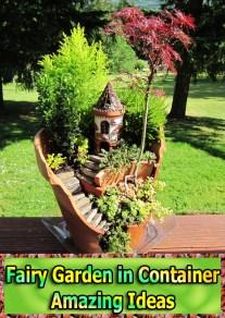 Fairy Garden in Container - Amazing Ideas