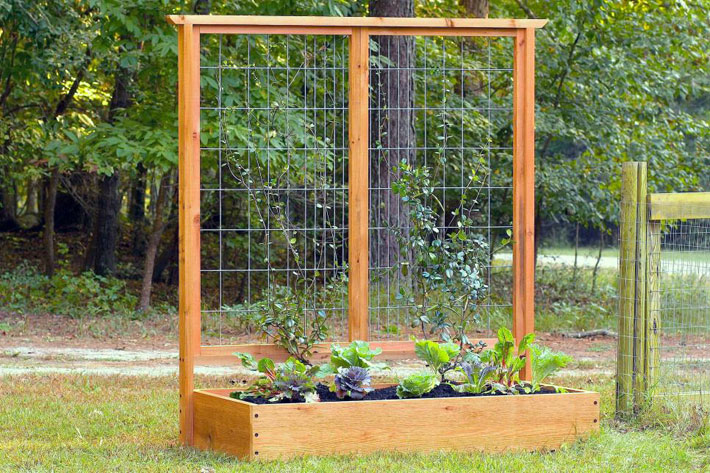 Diy Tutorial Build A Raised Bed and Trellis 2
