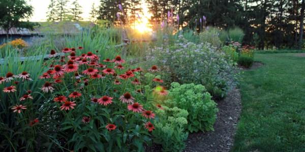 garden design & creation - quiet