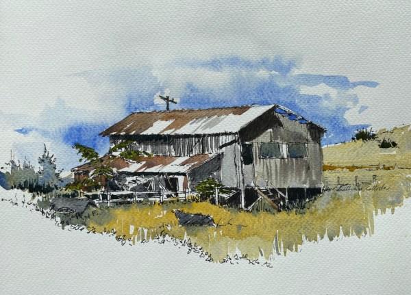 Farm Shed near Waitomo