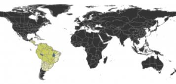 Distribución geográfica de la Paraponera clavata