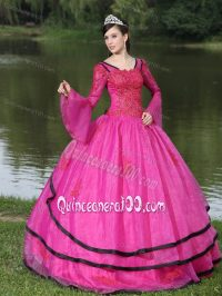 Long Sleeves and Appliques Decorated Quinceanera Dress in ...