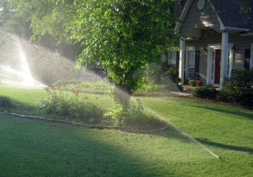 Lawn Care - Preparing for Water Bans - quinju.com