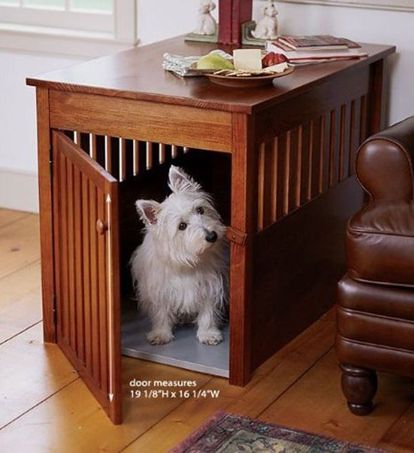 Family Room Renovation Ideas with your pet in mind - quinju.com