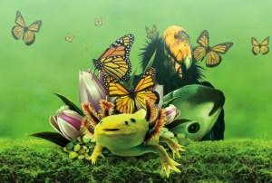 En grave peligro el futuro de los medios de subsistencia, la salud y el medio ambiente