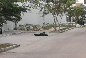 Encuentran dos cuerpos descuartizados en Ciudad Natura