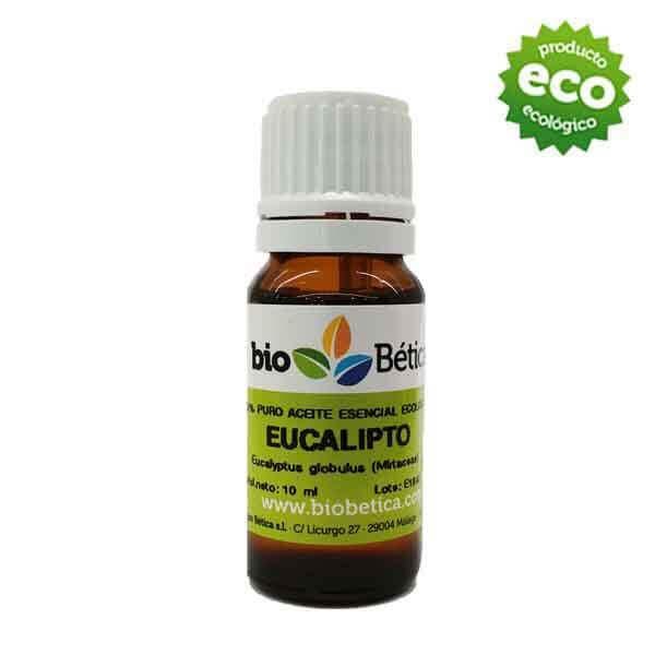 Aceite esencial de eucalipto 10 ml