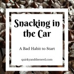 Snacking in the Car: A Bad Habit to Start
