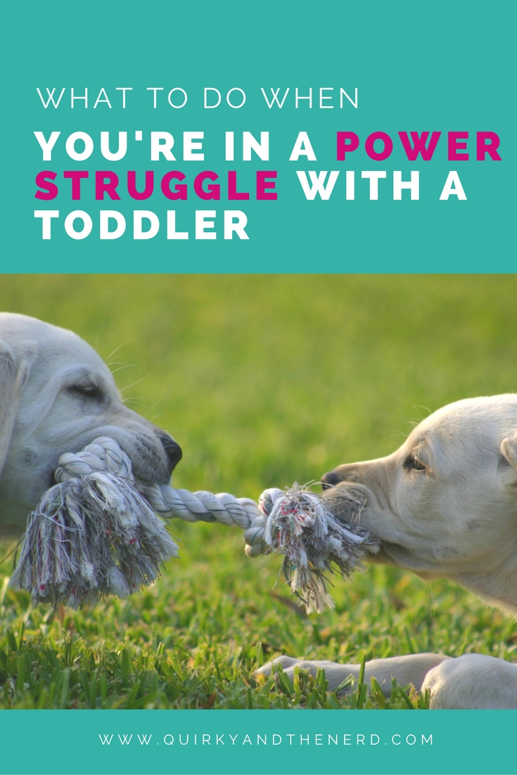 I always say not to get in a power struggle with your toddler. Except then I found myself in one. So what did I do? Find out two things I did and a few ways to put an end to the power struggle. quirkyandthenerd.com