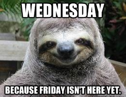 Wednesday Sloth