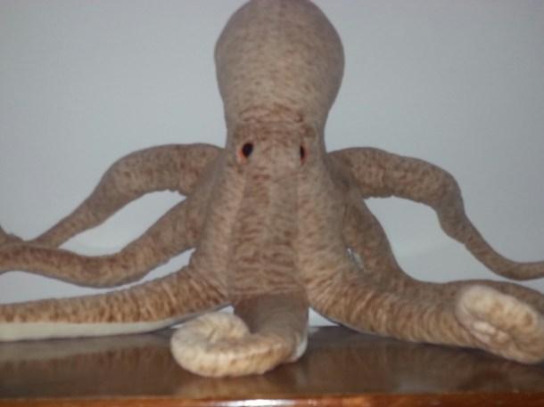 The Octopod