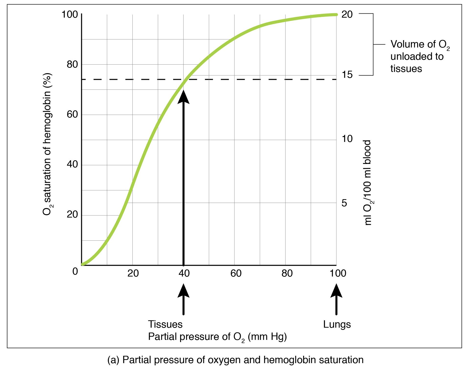 Oxygen Dissociation From Hemoglobin By Openstax Page 2 19