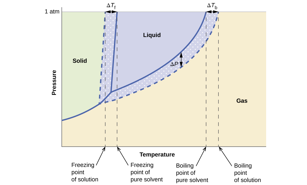 diagram of solid liquid and gas ideas phase for an aqueous solution a nonelectrolyte