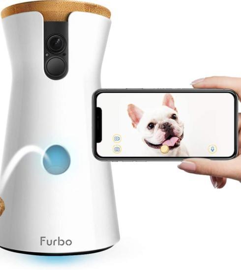 Quootip | App per controllare cane e gatto