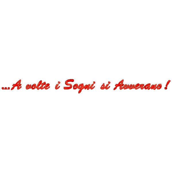 Cuscino con frase A volte i sogni si avverano  Quorino  Vendita online di Gadget Ricamati
