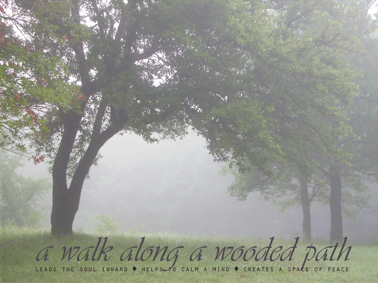 Parents Love Quotes Wallpapers Famous Quotes About Peace And Quiet Sualci Quotes