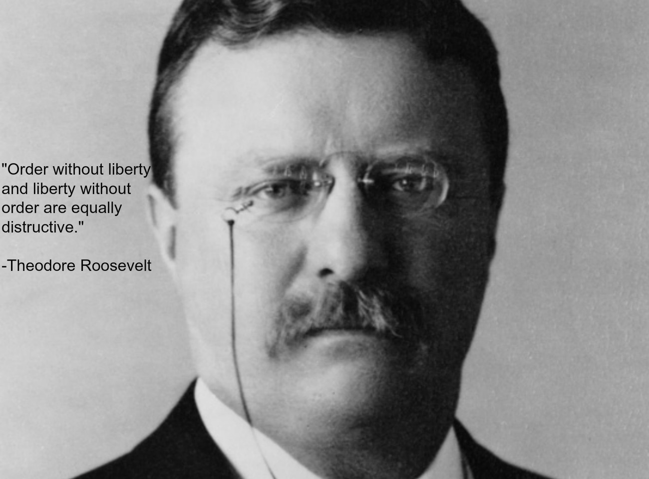 Theodore Roosevelt S Quotes Famous And Not Much
