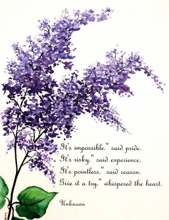 Quotes About Lilac 36 Quotes