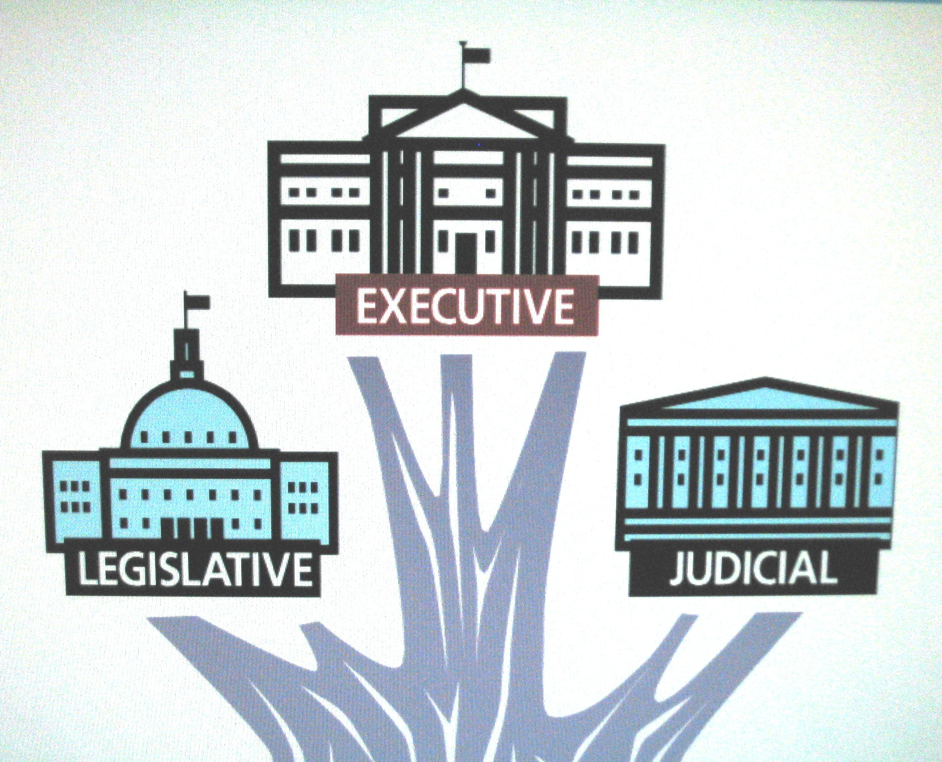 Quotes About Branches Of Government 52 Quotes