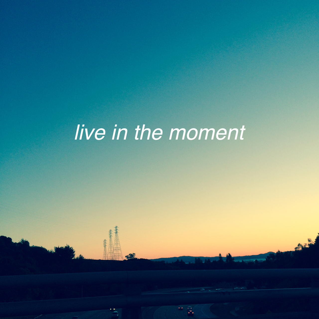 Quotes About Live In The Moment 304 Quotes