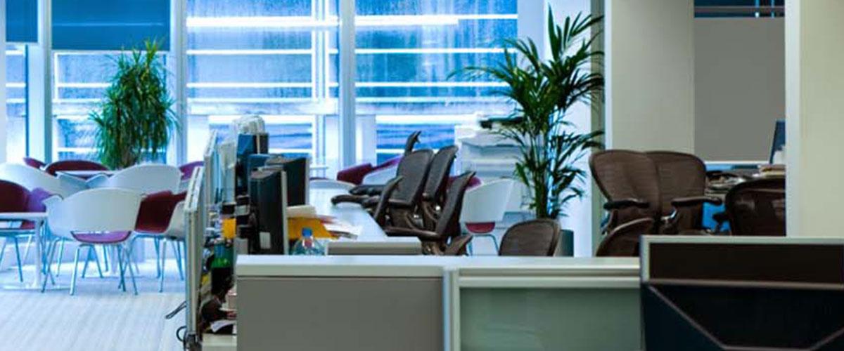 An open plan office