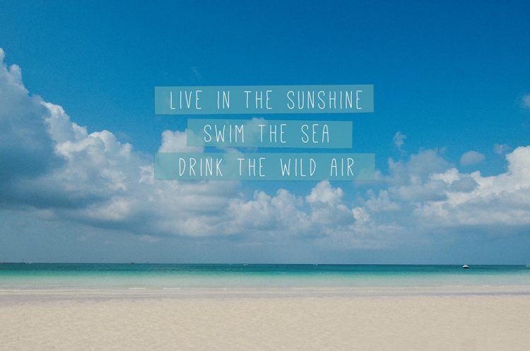 Michael Phelps Quote Wallpaper 35 Awesome Beach Quotes With Beautiful Images