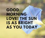 100 Good Morning Quotes for Love and Beloved
