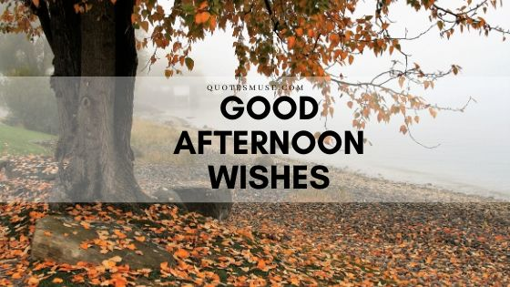 120 Good Afternoon Wishes for Spouse, Beloved and Friends