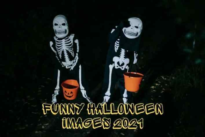 Funny Halloween images 2021