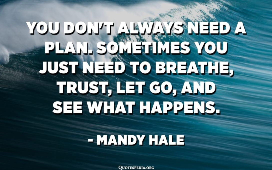You don't always need a plan. Sometimes you just need to breathe, trust, let go, and see what happens. - Mandy Hale
