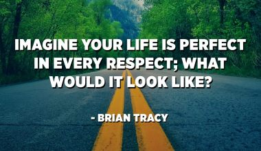 Imagine your life is perfect in every respect; what would it look like? - Brian Tracy