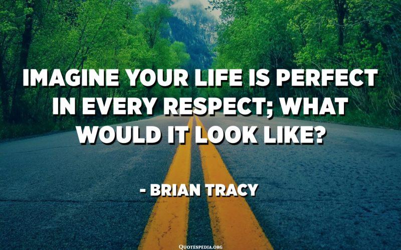 Imagineu que la vostra vida és perfecta en tots els aspectes; què semblaria? - Brian Tracy