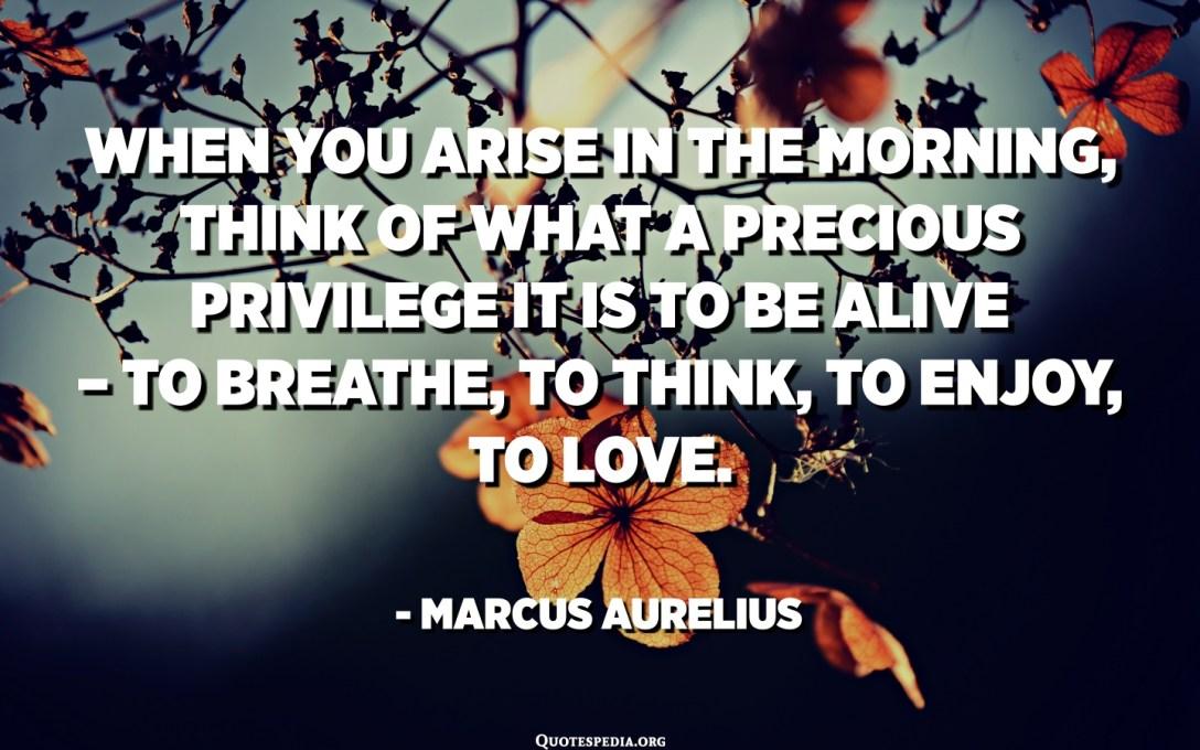 Cuando te levantes por la mañana, piensa en el privilegio precioso que es estar vivo: respirar, pensar, disfrutar, amar. - Marco Aurelio