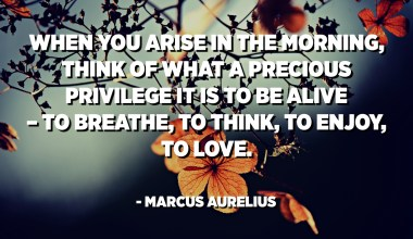 When you arise in the morning, think of what a precious privilege it is to be alive – to breathe, to think, to enjoy, to love. - Marcus Aurelius
