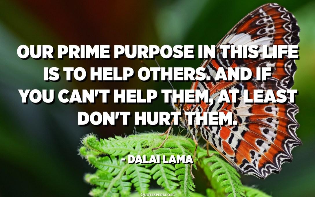 هدفنا الأساسي في هذه الحياة هو مساعدة الآخرين. وإذا كنت لا تستطيع مساعدتهم ، على الأقل لا تؤذيهم. - الدالاي لاما
