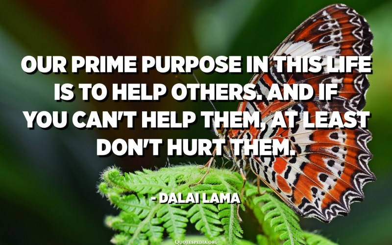 Our prime purpose in this life is to help others. And if you can't help them, at least don't hurt them. - Dalai Lama