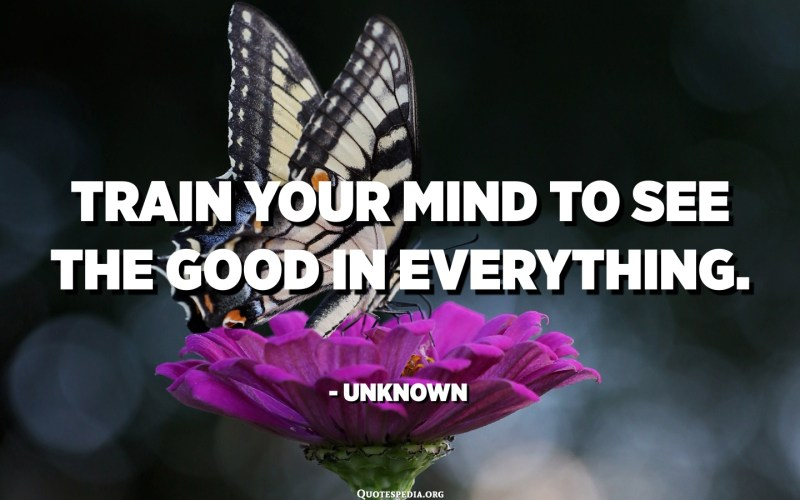 Train your mind to see the good in everything. - Unknown
