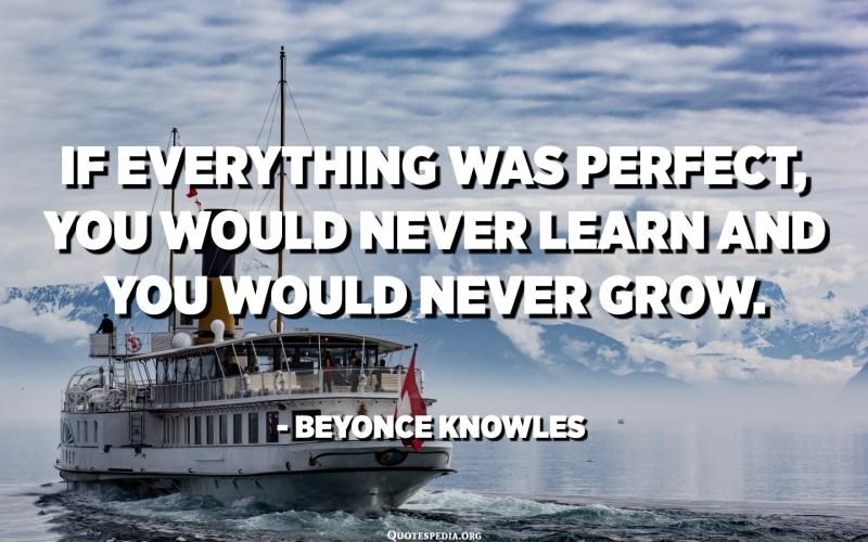 إذا كان كل شيء مثاليًا ، فلن تتعلم أبدًا ولن تنمو أبدًا. - بيونسي نولز