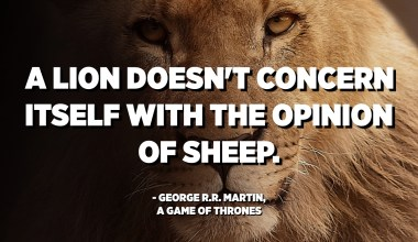 A lion doesn't concern itself with the opinion of sheep. - George R.R. Martin, A Game of Thrones