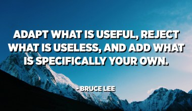 Adapt what is useful, reject what is useless, and add what is specifically your own. - Bruce Lee