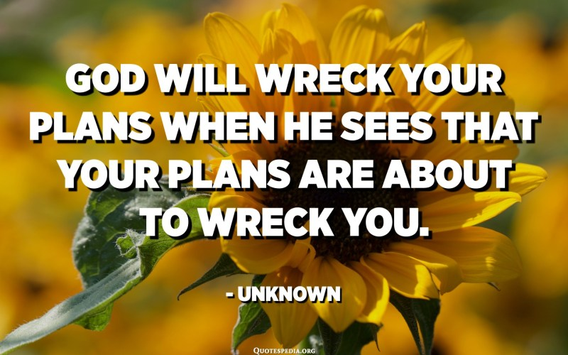 God will wreck your plans when He sees that your plans are about to wreck you. - Unknown