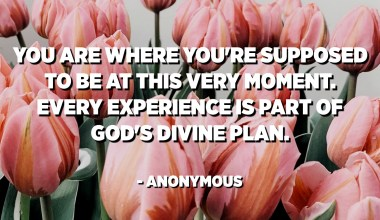 You are where you're supposed to be at this very moment. Every experience is part of God's divine plan. - Anonymous
