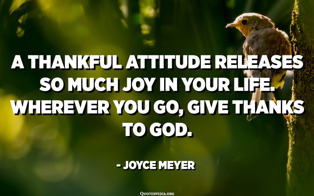 A thankful attitude releases so much joy in your life. Wherever you go, give thanks to God. - Joyce Meyer