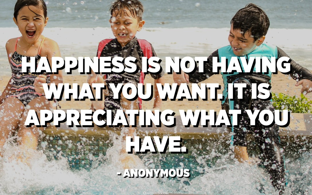 Happiness is not having what you want. It is appreciating what you have. - Anonymous