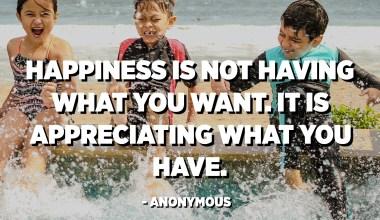 Sreča ni imeti tistega, kar bi si želeli. Cenite to, kar imate. - Anonimni